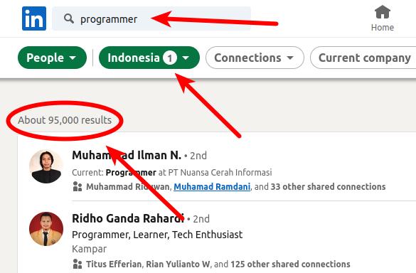 95 ribu Programmer Indonesia di LInkedin